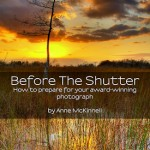 "Anne McKinnell's Free ebook: ""Before The Shutter"""