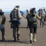 Behavior and Migration Habits of the Wildlife Photographer