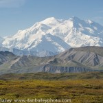 Notes And Photos From Denali National Park, Alaska