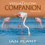 The Visual Flow Companion Volume 1, by Ian Plant