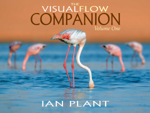 Visualflow companion
