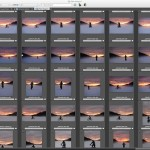 4 Reasons Why I'm in Love with Photo Mechanic Software