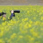 Photographing in The Palouse