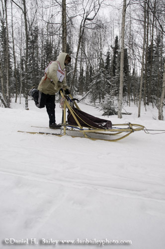 Dog Mushing, Anchorage, Alaska