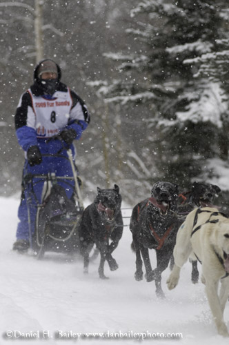 Sled Dog Racing, Anchorage, Alaska
