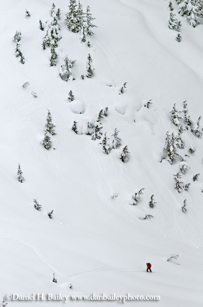 Backcountry skier, Rogers Pass, Candian Rockies, British Columbia, Canada