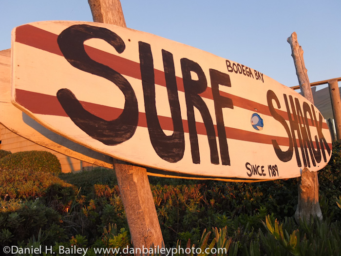surf shop sign at sunset, Bodega Bay, California