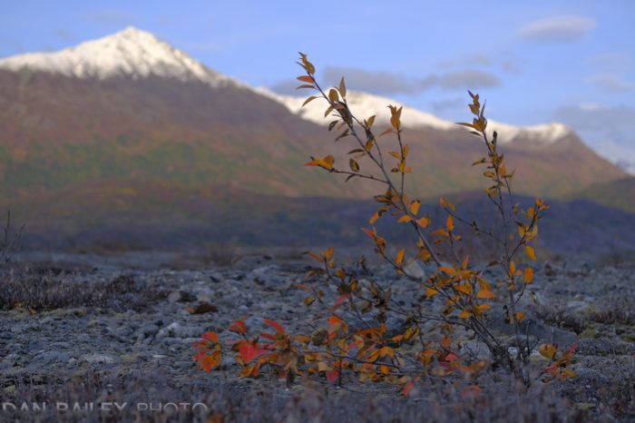 It's No Coincidence that Fall and Fuji Begin With The Same Letter | Dan Bailey's Adventure Photography Blog